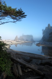 Olympic National Park 066