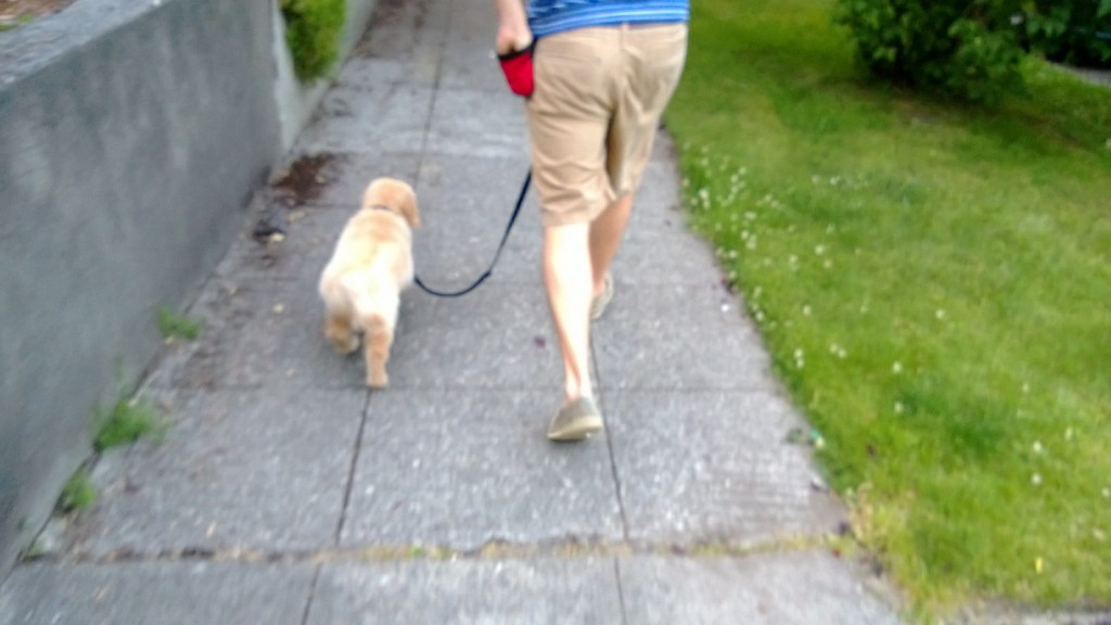 Jackson and Alex walking together.