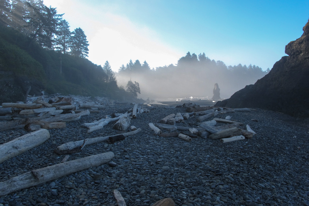 Ruby Beach in Olympic National Park.