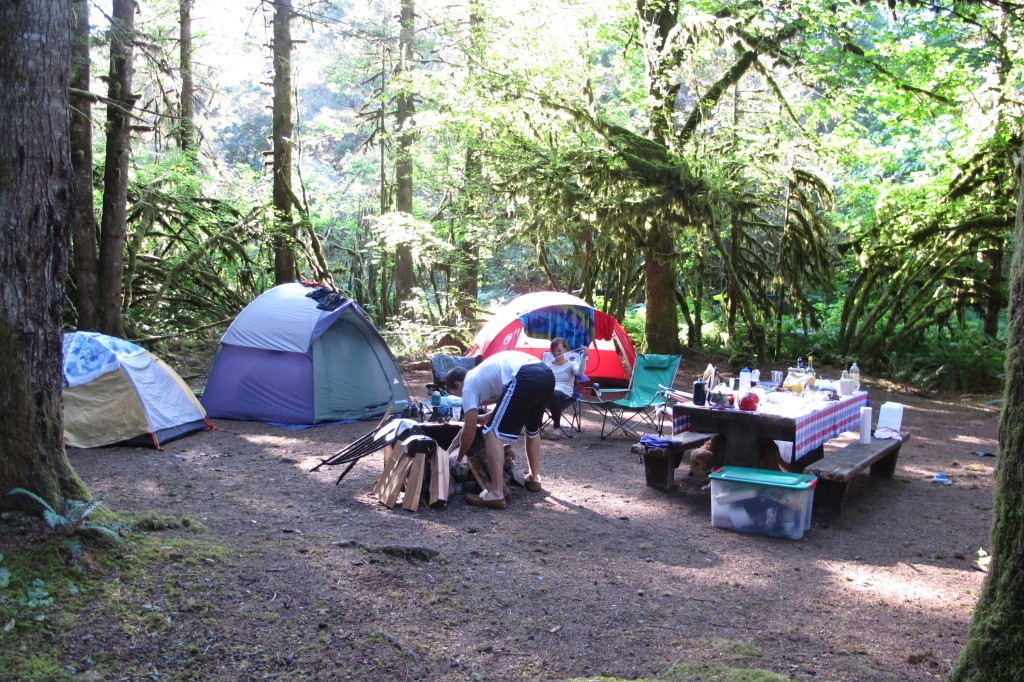 Our campsite at Horseshoe Cove in Concrete, WA