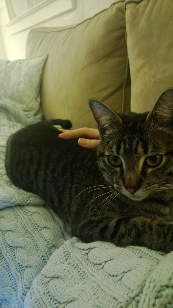 Oliver cuddles.