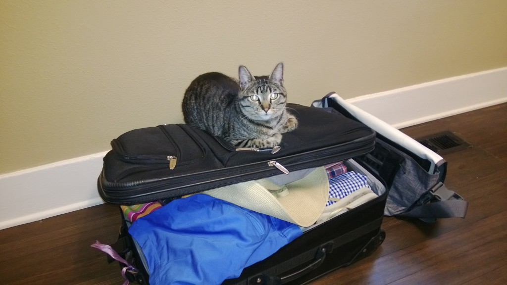 Such a helpful packer.