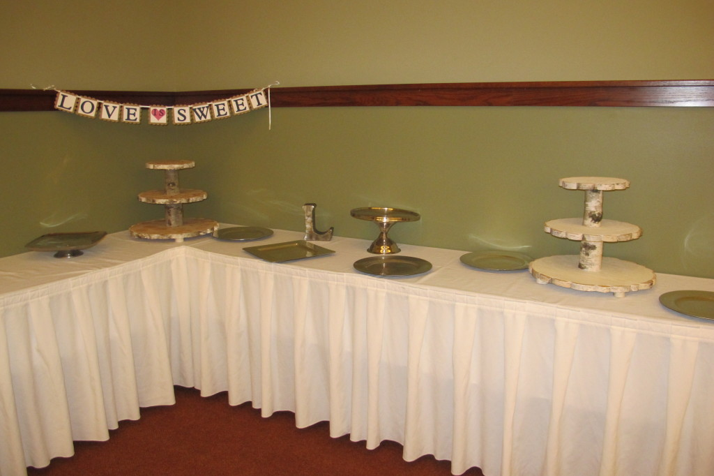 This doesn't look nearly as cute as it did when it had cupcakes on the table, but Sarah found some really pretty cupcake stands made out of old logs.