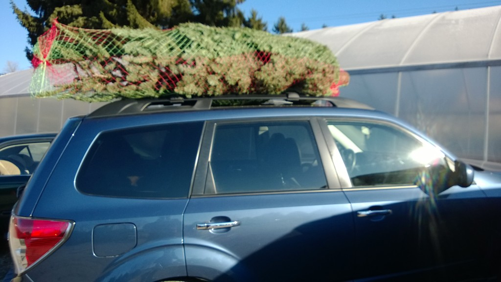 Ready to take our tree home.
