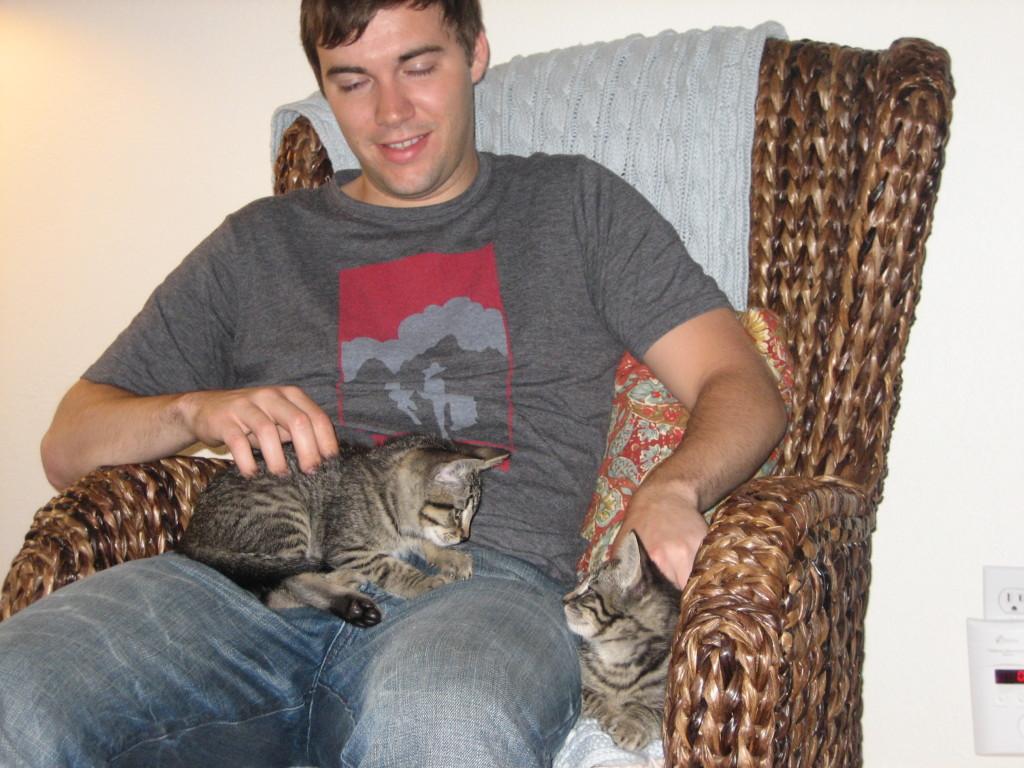 Kittens 018