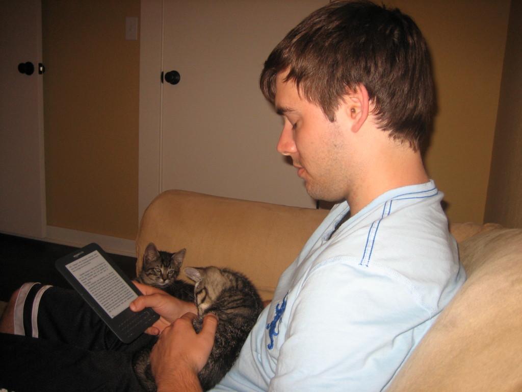 Kittens 057