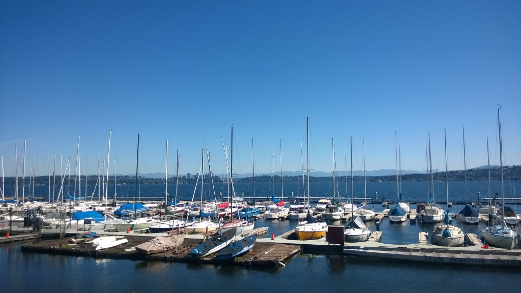 {View of Lake Washington from Leschi}