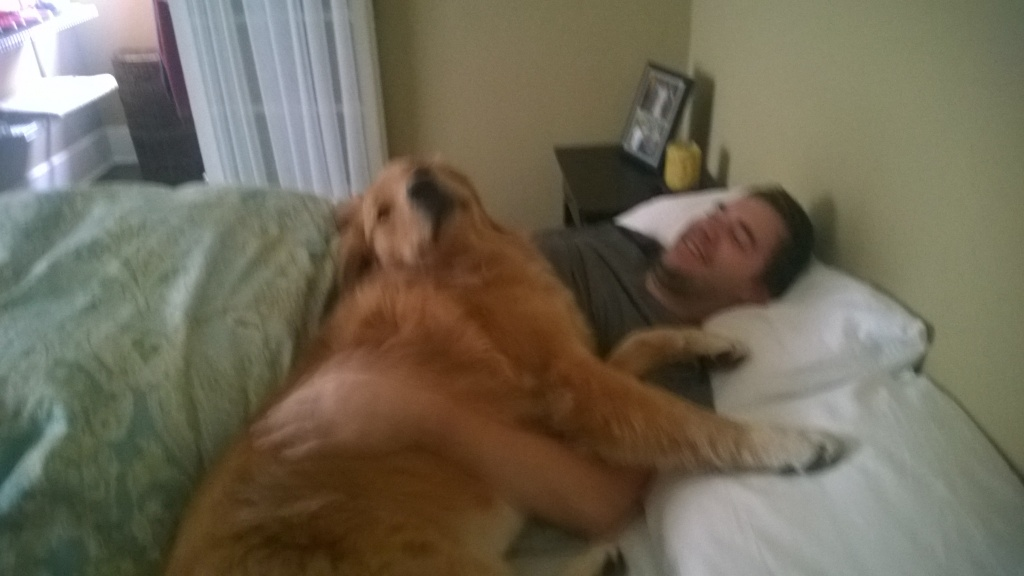 {Nor is he aloud on the bed!! Jackson waits until I get up in the morning and then jumps in bed with Alex because he knows Alex won't throw him off the bed... Stinker! He sure has us trained...}
