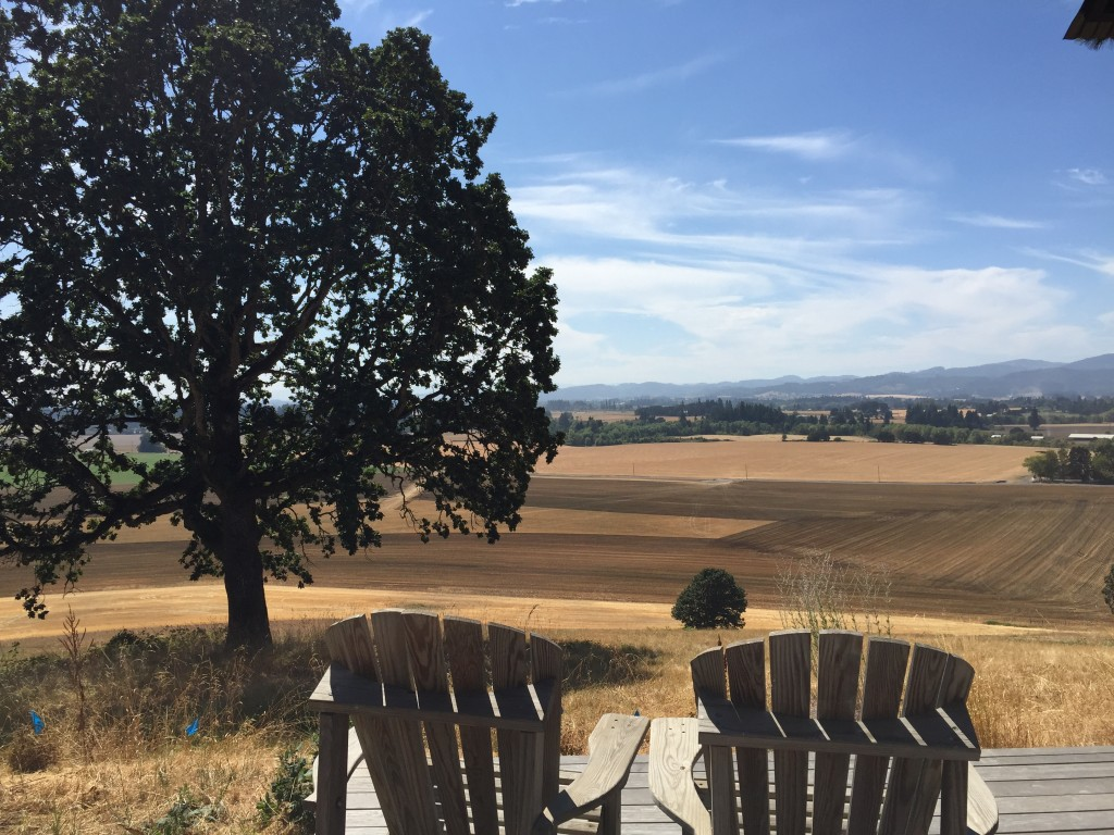 {The view from the porch of the cabin at Soter Vineyards}