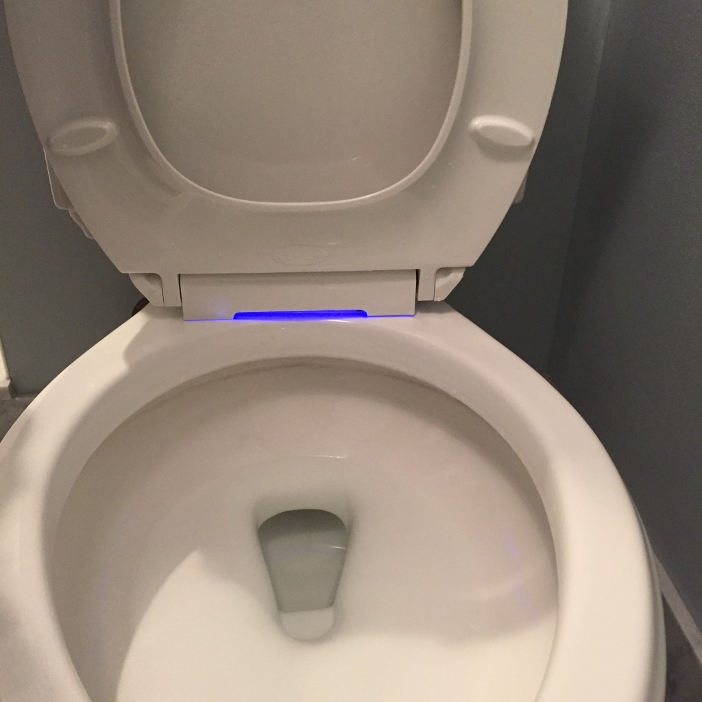 {Why yes, that is a light in our toilet seat... quite handy for the middle of the night!}