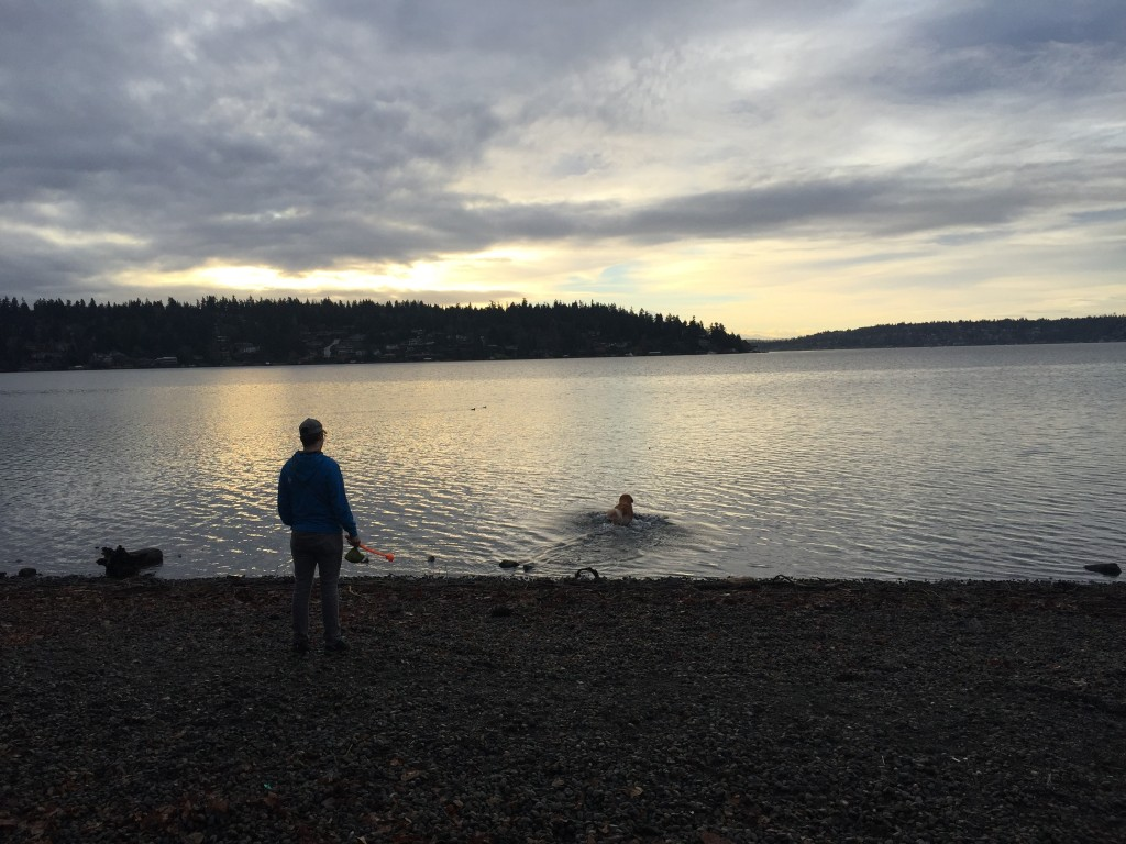 {We picked a good, clear morning for our walk around Seward Park last weekend.}